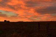 17th Nov 2016 - Kansas Morning Landscape