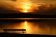 4th Nov 2016 - Empty Bench - Kansas Sunset at Pomona Lake
