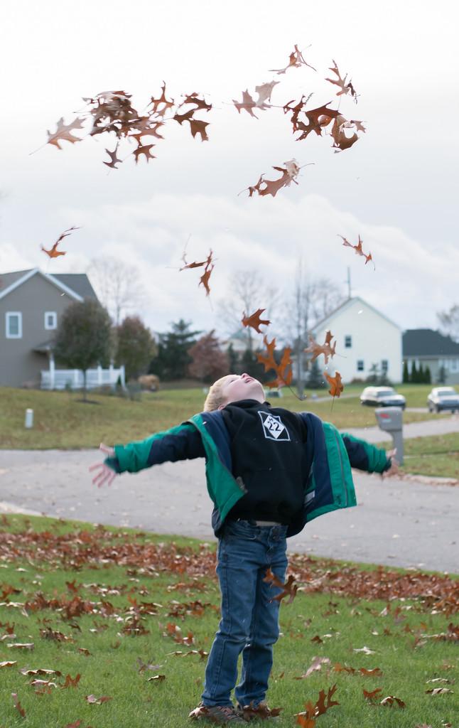 Fall fun by dridsdale