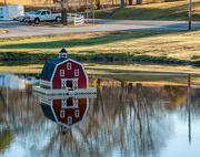 19th Nov 2016 - Duck pond house