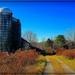 Mosier's Barn 2 by olivetreeann