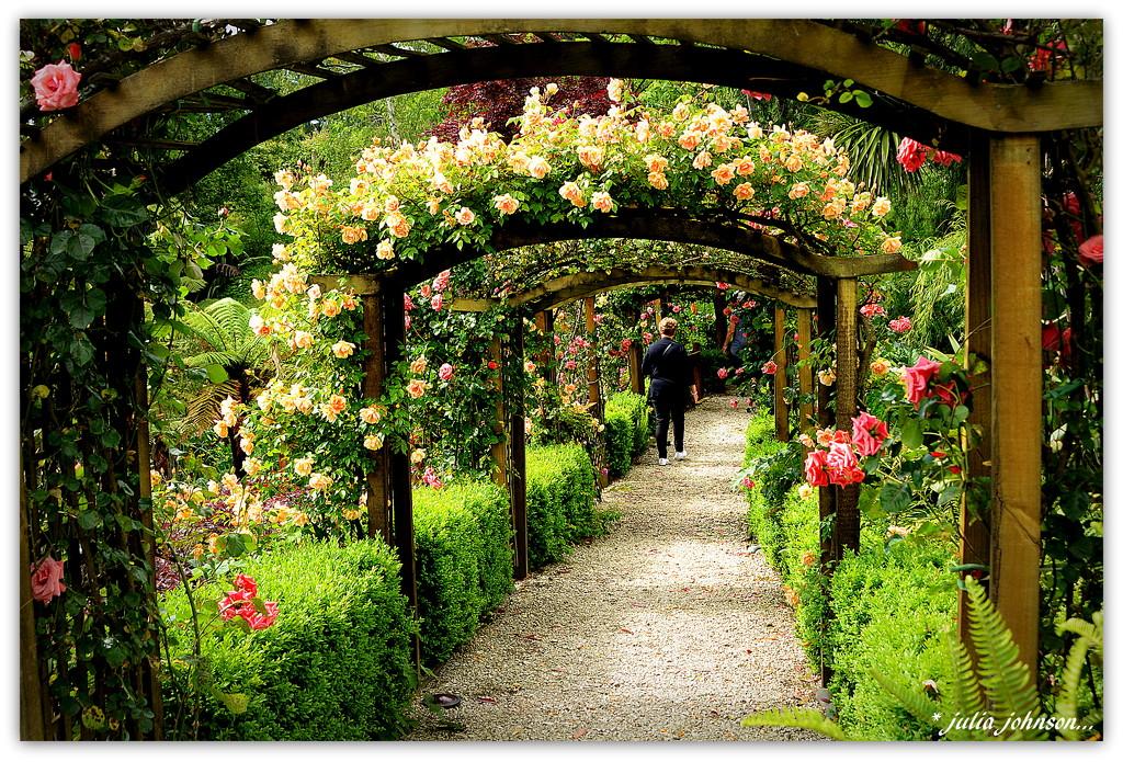 Fountain Gardens.... by julzmaioro