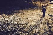 19th Nov 2016 - First snow. Night. Jackets over PJs.