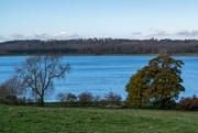 21st Nov 2016 - Rutland Water Autumn