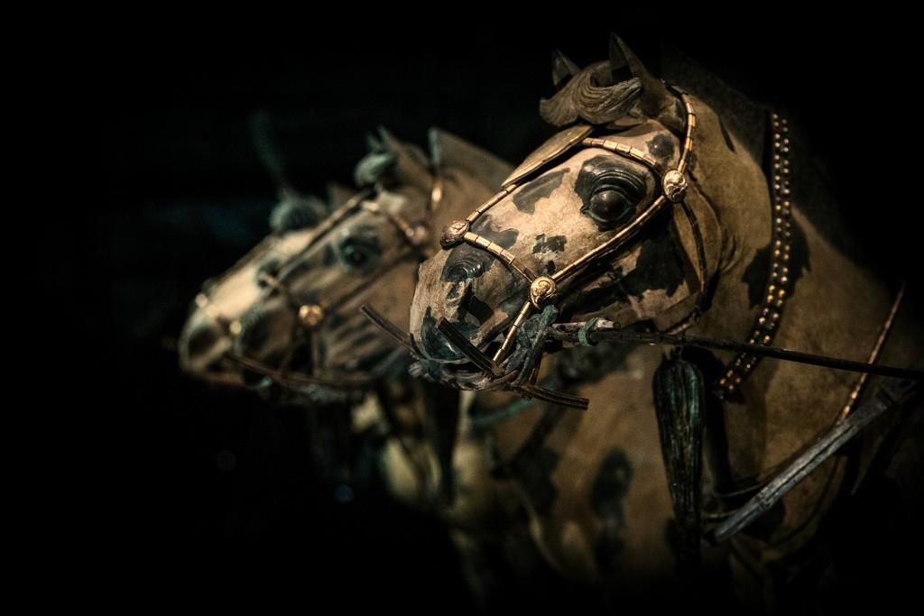 Xi'an Terra Cotta Horses of Emperor Qin:  Reproductions by jyokota