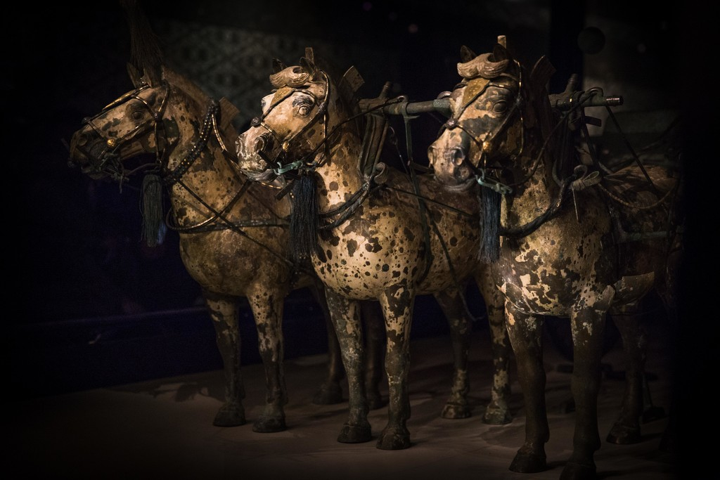 Xi'an Terra Cotta Horses: Original Ones by jyokota