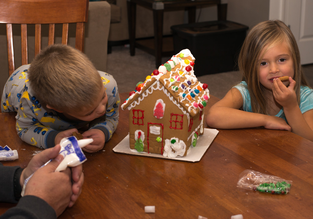 Gingerbread House by dridsdale