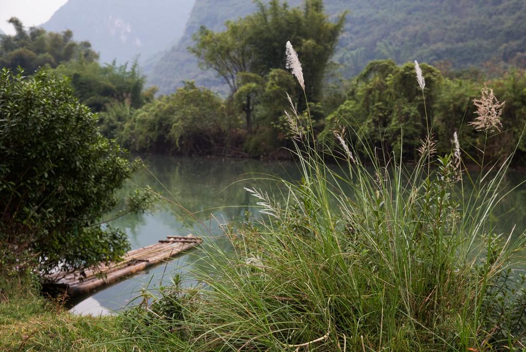 Bamboo Raft Ready  by jyokota