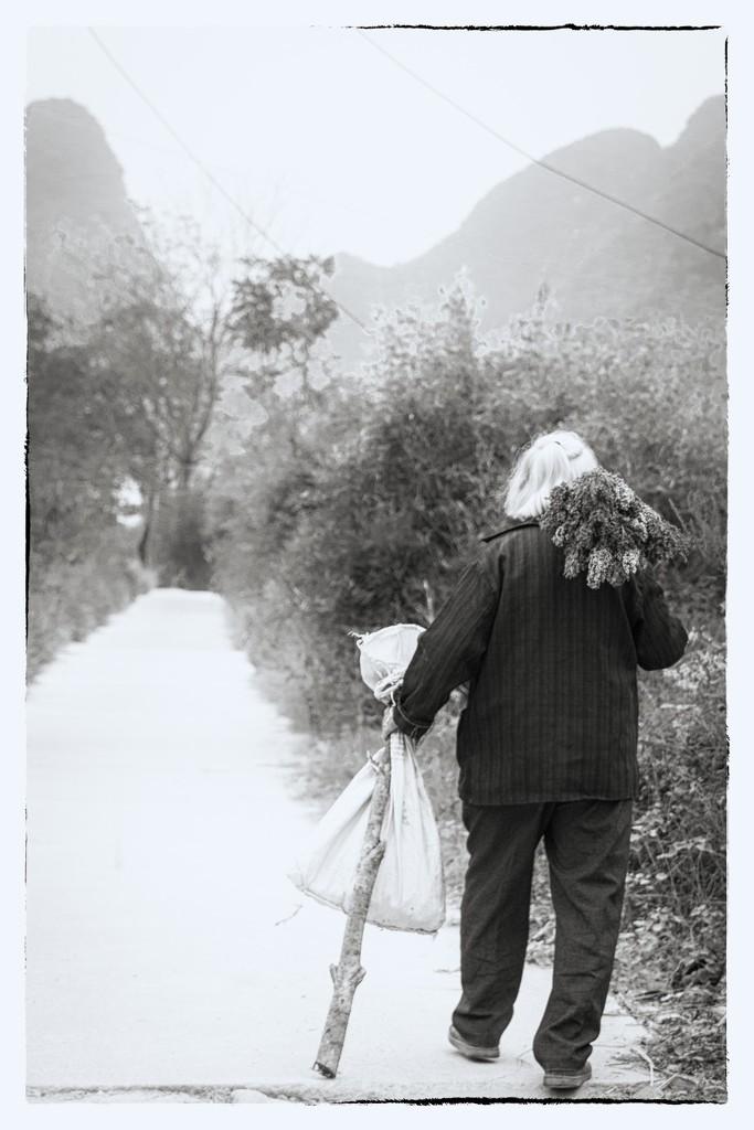 Carrying the Sesame Seed by jyokota