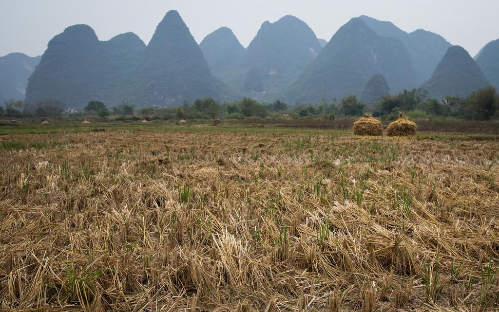 Haystacks Against the Mountains by jyokota