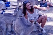 28th Nov 2016 - selfie with kangaroo