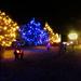 Middle Smithfield Tree Lighting 2
