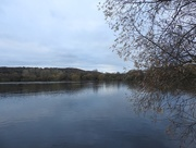 27th Nov 2016 - A quick walk around the lake