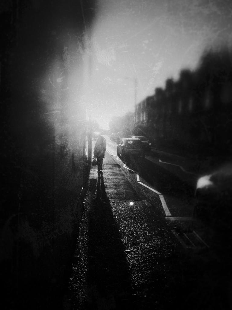 Pedestrian  by rachelwithey