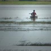 29th Nov 2016 - Cambodia: Fishing on Tonle Sap Lake 25