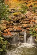 30th Nov 2016 - Autumn Falls II
