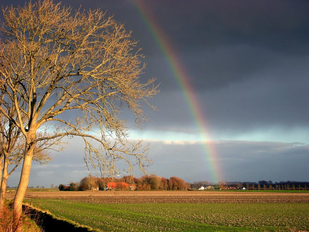 Light and rainbow. by pyrrhula
