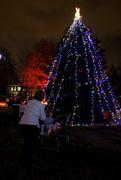 29th Nov 2016 - Community Christmas Tree