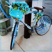 28th Nov 2016 - Biking away the Blues