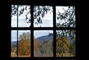 30th Nov 2016 - Through the Window