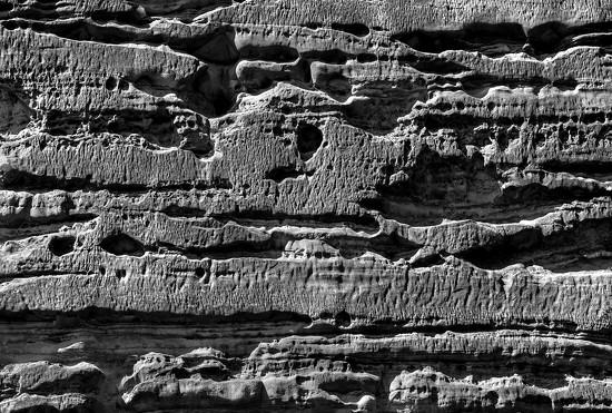 Rocky by dulciknit