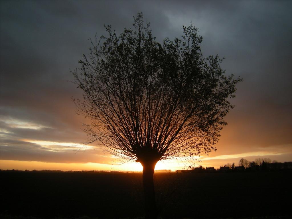Sundown by pyrrhula