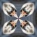 Kaleidoscope Swan