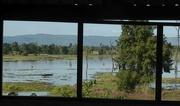 16th Nov 2016 - Cambodia: View from the butcher's villa