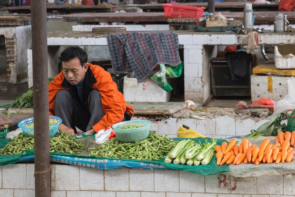 Industriously Working in the Market by jyokota