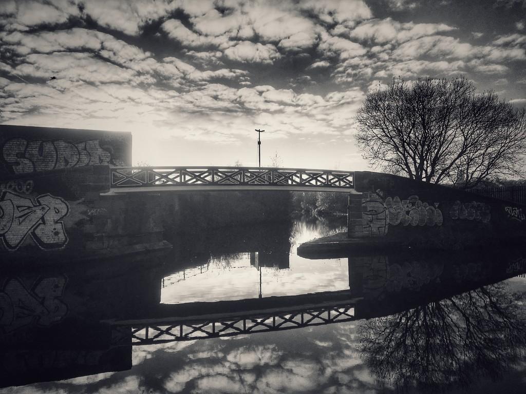 Bridge by rachelwithey