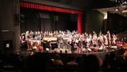 1st Dec 2016 - Winter Concert #1 Orchestra