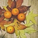 Autumn Leaves by jamibann