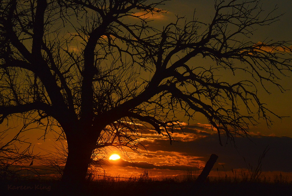 Kansas Sunset 11-29-16 by kareenking