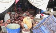 27th Nov 2016 - Cambodia:  Fermented Fish Paste Market