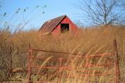 26th Nov 2016 - Red Barn and Fence