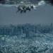 The Desolation of Smaug by gavincci