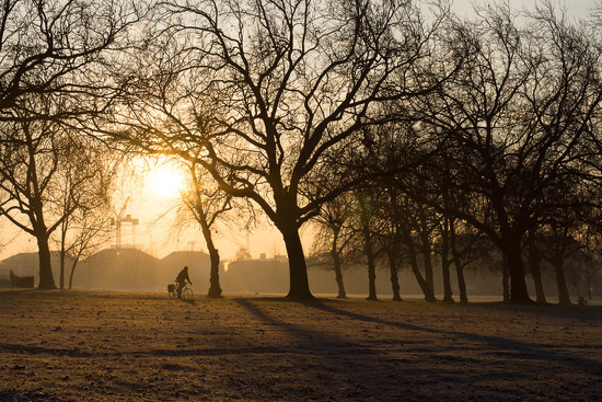 Winter sun by helenm2016