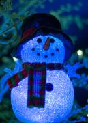 6th Dec 2016 - Frosty