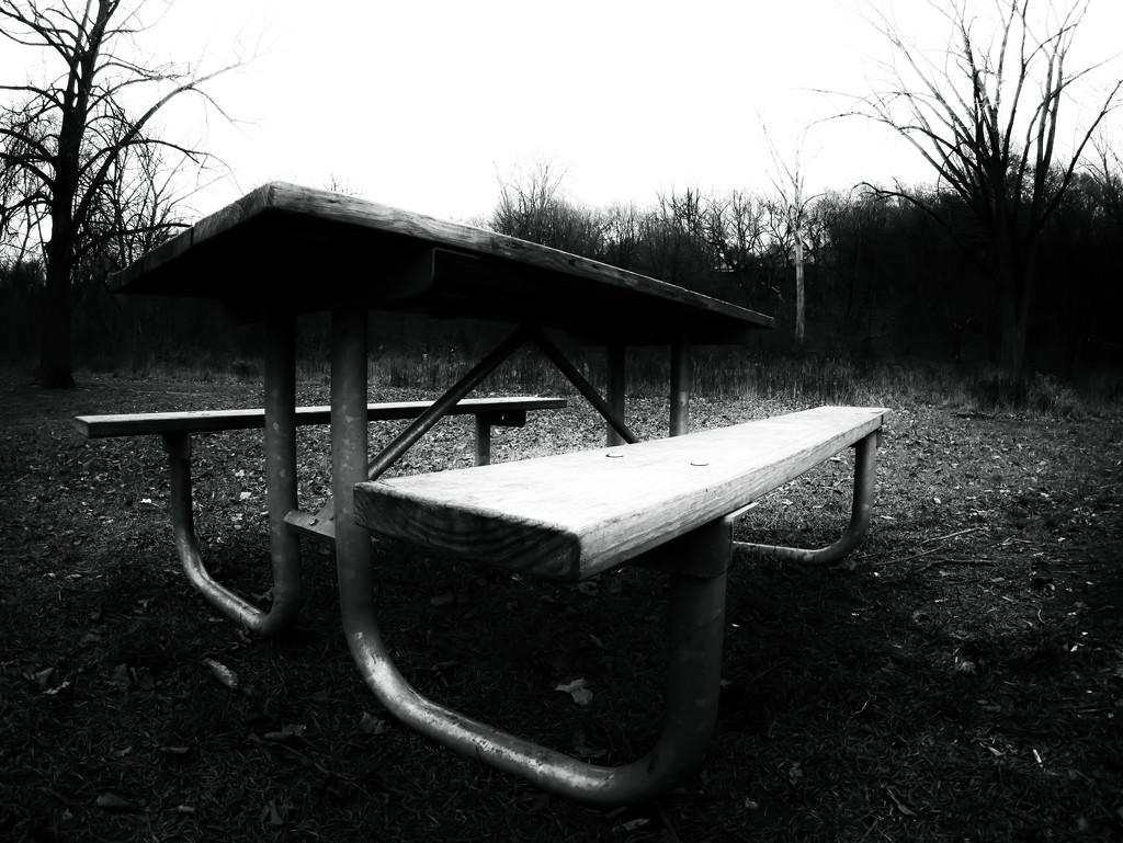 random picnic table... by northy