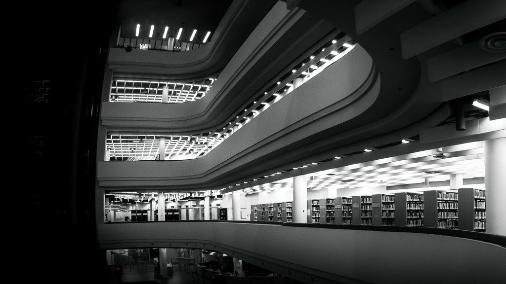 Toronto Reference Library by northy