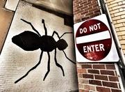 8th Dec 2016 - Do Not Enter