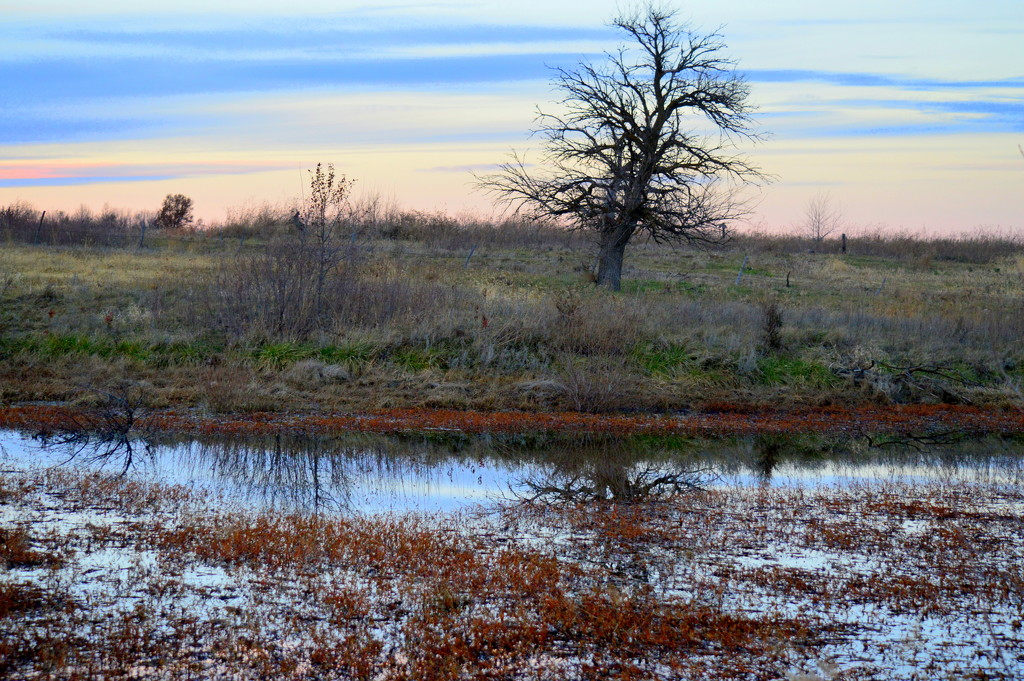 Subtle Layers of Kansas Color by kareenking