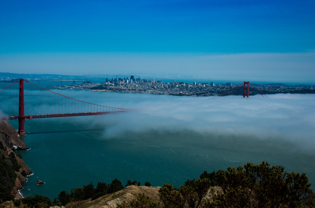 Shrouded In Fog by stray_shooter