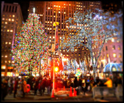 9th Dec 2016 - Christmas In New York