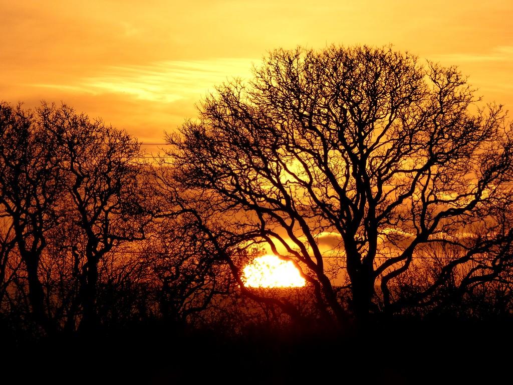 Last few moments of sun by julienne1