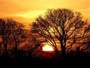 11th Dec 2016 - Last few moments of sun