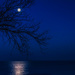 Moon over Lake Michigan by taffy