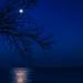 Moon over Lake Michigan by taffy
