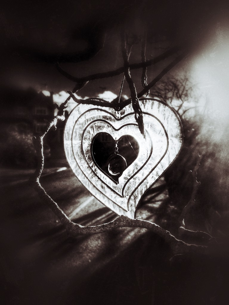 Heart by rachelwithey