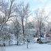 Snowy scene by mittens